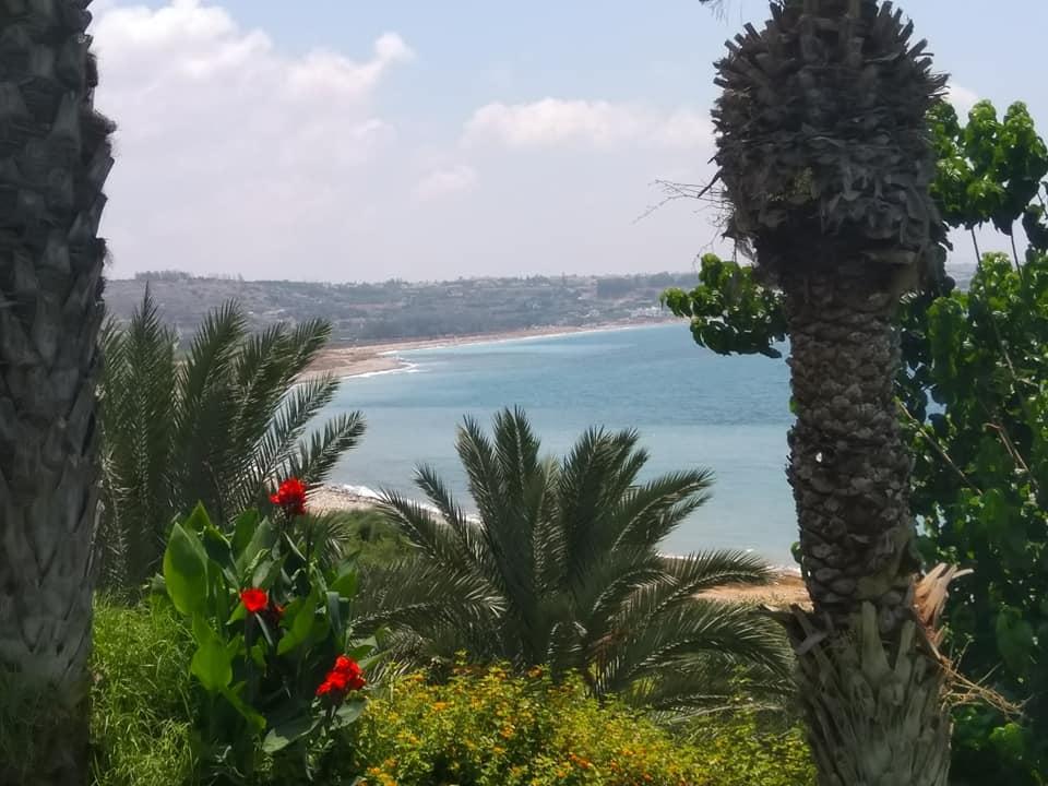 Почивка в Пафос, Кипър - 7 нощувки на база ол инклузив
