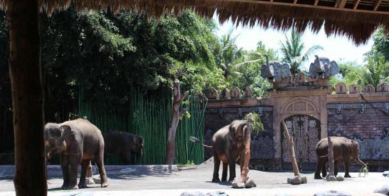 Остров Бали - обиколен тур