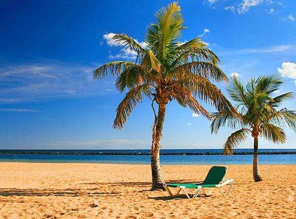 Почивка в Испания 2021 - Канарски острови - остров Тенерифе