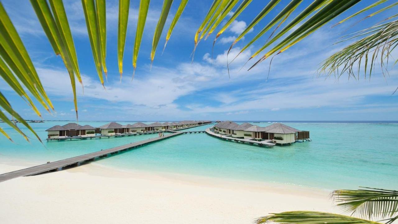 Почивка на МАЛДИВИ 2021-22 - 7  нощувки - Paradise Island Resort 4*