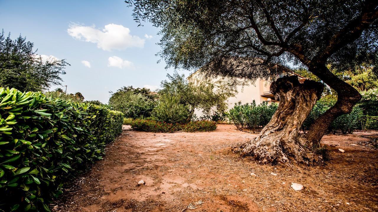ATHENA RESORT Superior 4* - All Inclusive почивка в Сицилия през 2021 г. с полет от София