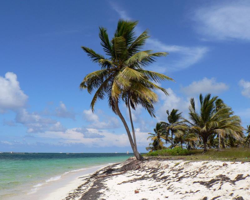 Екзотична Коледа и Нова година на топло в Доминикана
