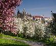 Пролет в Прага и бирен тур