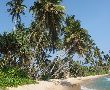 Шри Ланка - гранд тур в благословената земя - 05.12.2020 г.
