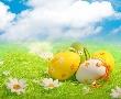Великден в Сицилия от ВАРНА - 14.04.2017 г. - ТОП оферта!
