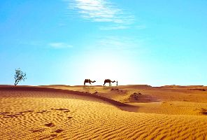 Круиз по Нил, екскурзия в Кайро и мини почивка в Хургада 2019
