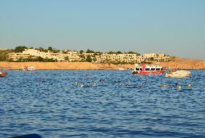 Йордания и Шарм ел Шейх, Египет - 8 дни - от София и Варна