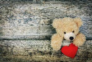 Романтичен Св. Валентин в Шато Монтан 3*, Троян