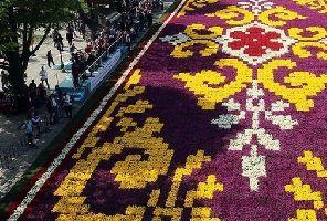 Фестивала на лалето в Истанбул 2020