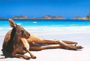 Австралия, Нова Зеландия, Сингапур и Бали - загадъчните южни земи!