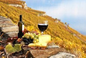 ФРАНЦИЯ - Прованс - По пътя на римляните и хубавото вино!