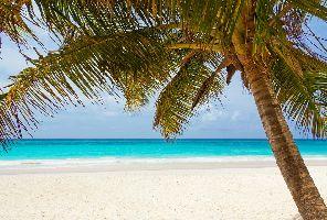 КРУИЗ: Куба, Ямайка, Кайманови острови и Мексико - Включени самолетни билети!