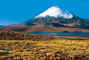 Аржентина с Патагония и Чили с Великденския остров - 25.01.2018 г.