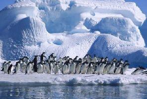 Аржентина – От танго през ледници до края на света!