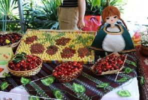 Празник на черешата в град Кюстендил - автобусна екскурзия - 1 ден
