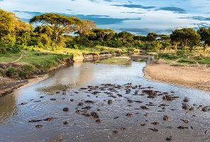Сафари в Африка и ол инклузив почивка на Занзибар, 10 нощувки, 16-27.08.2017