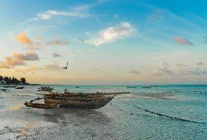 Танзания - сафари и почивка в Занзибар - с полет от София
