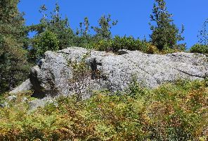 Кръстова гора и Караджов камък