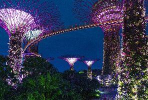 Нова Година в Сингапур - Градът на бъдещето - 28.12.2020 г.