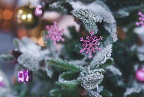 Петзвездна Нова година в Парк Хотел Пирин 5*, Сандански