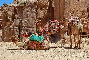 Олекотен тур на Израел и Йордания 2020 - от ВАРНА