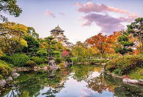Япония и магията на Момиджи - 06.11.2020г.