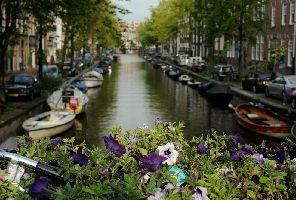 Цветна пролет в Амстердам - парк Keukenhof (с водач)