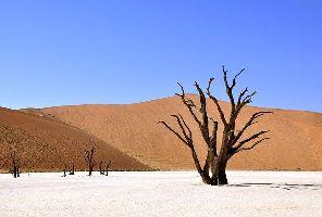 Намибия: Диамантът на Африка: 11 дни/8 нощувки - 21.05.2020 г.