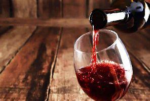 Ниш и винарна Малча -  еднодневна екскурзия с автобус!