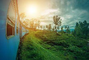 Екскурзия Шри Ланка – островът на удоволствията и подправките 2021