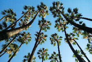 Майски празници 2020: Андалусия+почивка на Атлантическия океан и Коста де ла Лус