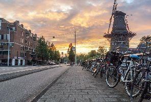Нидерландия (Холандия) и цветният килим в Брюксел