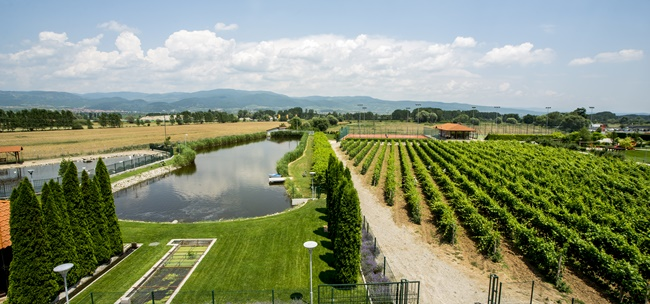 Вино и хубав живот във винарна Uva Nestum, Гоце Делчев
