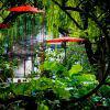 Градините на Суджоу