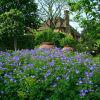 Градината на замъка Сисингхърст - райско място на прага на Лондон
