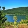 Природен резерват Острица - приказно красиви планински цветя