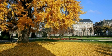 Страсбург - Топ 5 чаровни забележителности