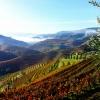 Азейтао – най-симпатичното португалско селце