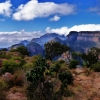 Парк Крюгер - туризъм сред дивата природа