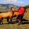 Разказвача на приказки - или как да отидеш на различна екскурзия в България