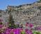 Модика (Сицилия) – градът на стълбите и шоколада