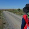 Топ 10: Любопитни факти за пътя Камино де Сантяго