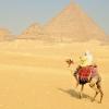 Египет се завръща - безопасно ли е да се пътува там (ИНФОГРАФИКА)