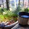 10 идеи за термоса на път (освен чай и кафе)