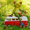 На екскурзия с автобус: 15 занимания за дълъг преход