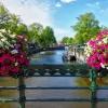 Плаване с кауза по каналите на Амстердам