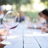 Cantine Aperte: Уикендът на отворените винарни в Италия