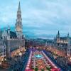 Килим от цветя в Брюксел - картина от 600 000 хиляди живи цветя