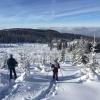 Преходи със снегоходки - 5 причини да пробвате тази зима