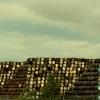 Дъфтаун -  световна столица на уискито